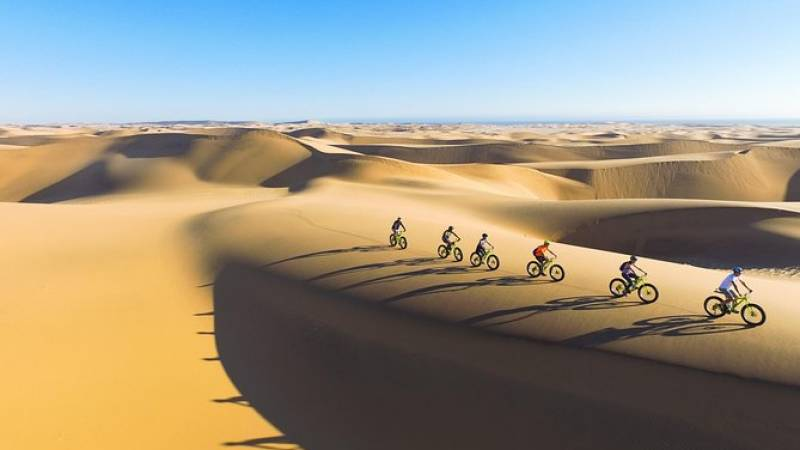 Scenic Desert Tour by Bike