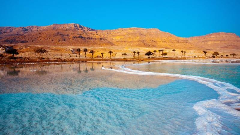 Private Half-Day Tour to the Dead Sea from Amman