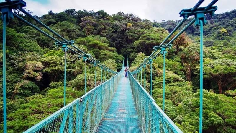 Monteverde Hanging Bridges Day Trip from San Jose