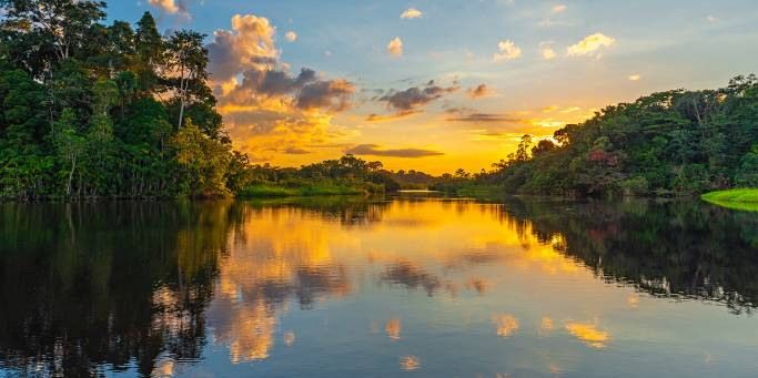 Lake Sandoval | Amazon Jungle | Peru