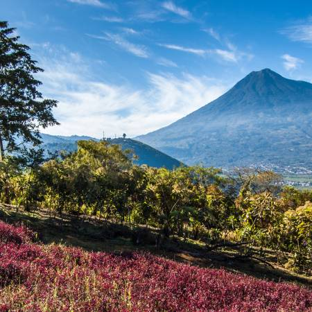 Antigua Top Spot Guatemala