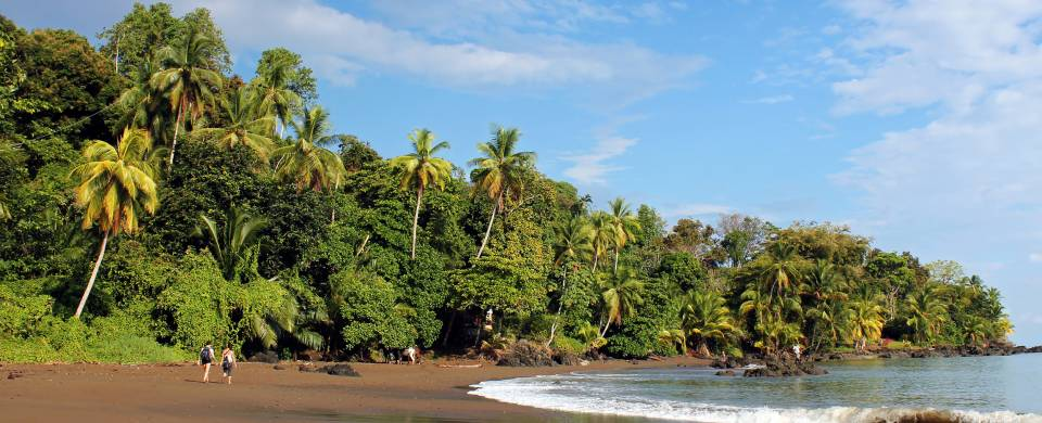 Refreshing water laps the jungle-fringed shore in Bahia Drake