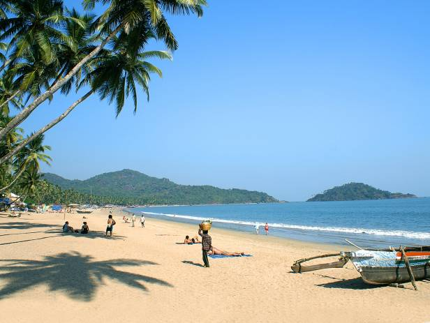 Beautiful sandy beach in Goa, fringed with palm trees