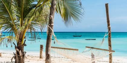 Beautiful view of palm and hammock on Zanzibar beach
