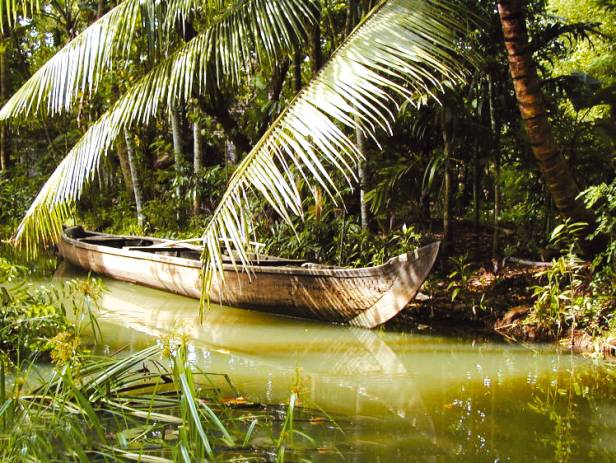 Wooden boat drifting along the river in Kumarakom