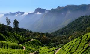 Beautiful-South-Itinerary-Main-South-India-Regional-Tours-India