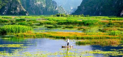 Beautiful-lush-green-delta-in-Southeast-Asia