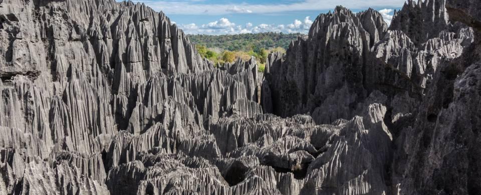 The impressive limestone needles of the Tsingy de Bemaraha National Park near Bekopaka