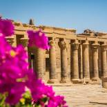 Philae Temple | Aswan | Egypt | On The Go Tours