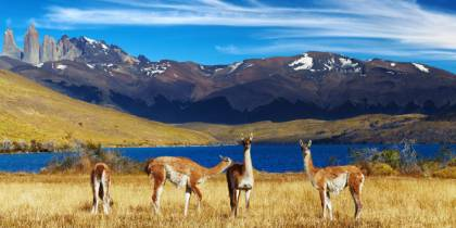 Best places to visit in Chile - Torres del Paine - On The Go Tours