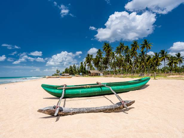 Pristine golden beach with palm dreams and clear water in Trincomalee
