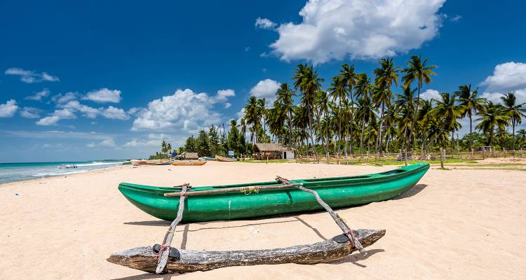 Sri Lanka Northeast Explorer - 12 Days