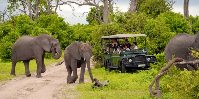 Botswana Lodge Explorer 2019 Main Image - Chobe National Park - Africa Tours