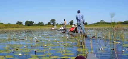 Botswana-Lodge-Explorer-Itinerary-Main-Lodge-Safaris-Africa
