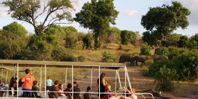 Chobe Boat Cruise | Botswana | Africa