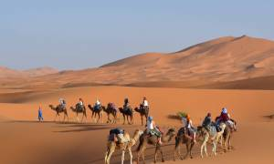 Camel Trekking in the Sahara - Morocco Tours - On The Go Tours