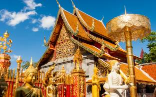 Visit gleaming Wat Phra That Doi Suthep in Chiang Mai on our 2017 tours to Thailand