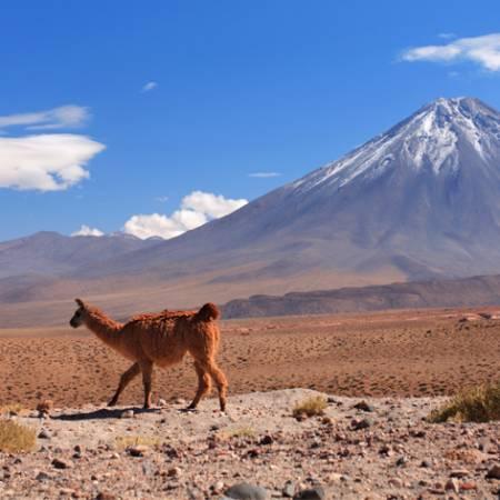 Chile-Tab