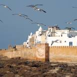 Essaouira on the Atlantic Coast of Morocco