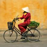 Local cycling | Vietnam | Southeast Asia