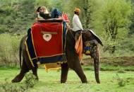 Dera Amer Safari