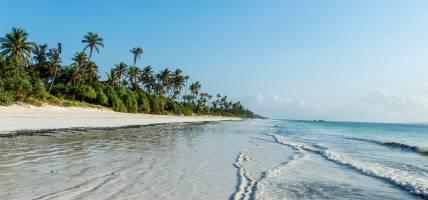 Deserted beach on Zanzibar