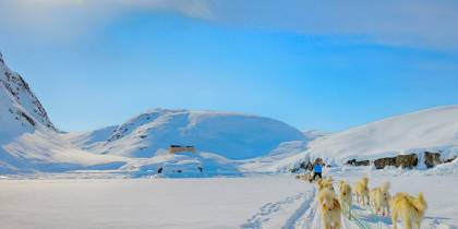 Dog sledding in Greenland - On The Go Tours