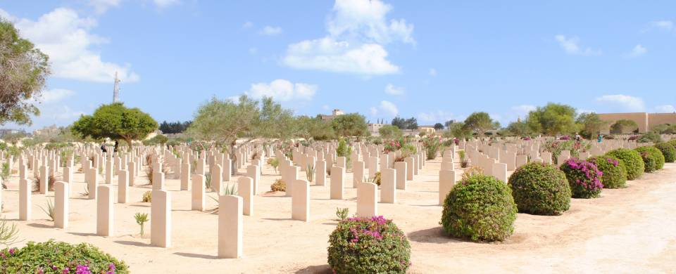 The cemetery in El Alamein fringed with low shrubs
