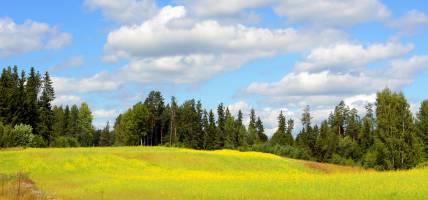 Estonia - Best Time to Visit Main Image