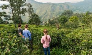 Family in Nuwara Eliya - Sri Lanka - On The Go Tours
