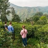 Family in Nuwara Eliya | Sri Lanka