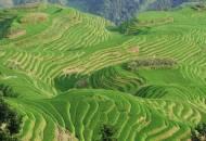 The Dragon's Backbone | Longsheng | China