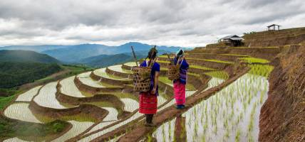 Hill tribe people in northern Vietnam - On the Go Tours
