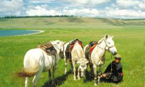 Horseback-Journey-Itinerary-Main-Tailor-made-Holidays-Trans-Siberian