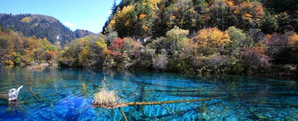 Dazzling turquoise water surrounded by beautiful foliage in Jiuzhaigou
