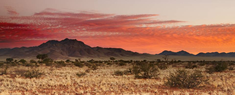Red sky over the golden grass and sand of the Southern Kalahari, Namibia