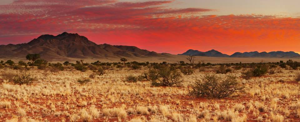 Blood red sky during a sunset at Central Kalahari Grand Reserve