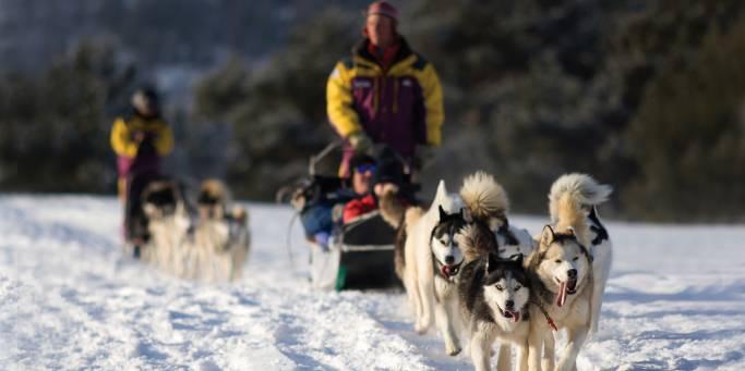 Khaski dog sledding in Yekaterinburg    Trans-siberian Railway   Russia
