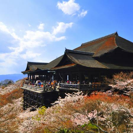 Kiyomizu Temple Kyoto - Japan Tours - On The Go Tours