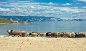 Lake-Baikal-Trans-Siberian-Tab-2