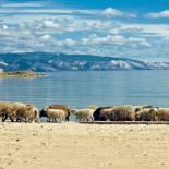 Lake Baikal | Trans-siberian Railway | Russia