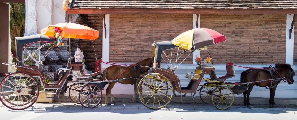 Horses and carriages on the streets in Lampang