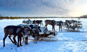 Lapland Long Weekend Main - Finland - On The Go Tours