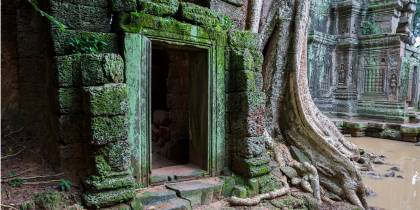 Left hand menu image - Ta Prohm doorway