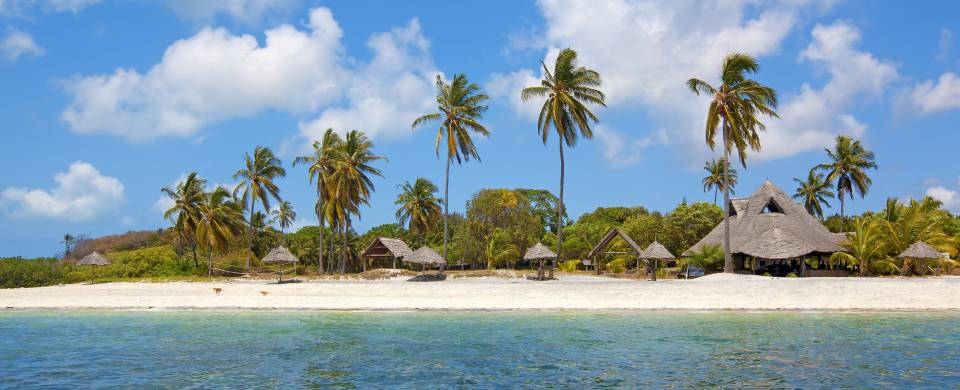 Palm trees fringing the white sand and turquoise water of Mafia Island