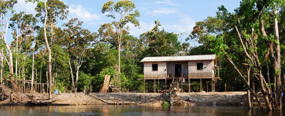 Wooden hut sitting on stilts at the side of the river in Manaus