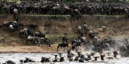 Mara River - Kenya - Africa Safaris - On The Go Tours