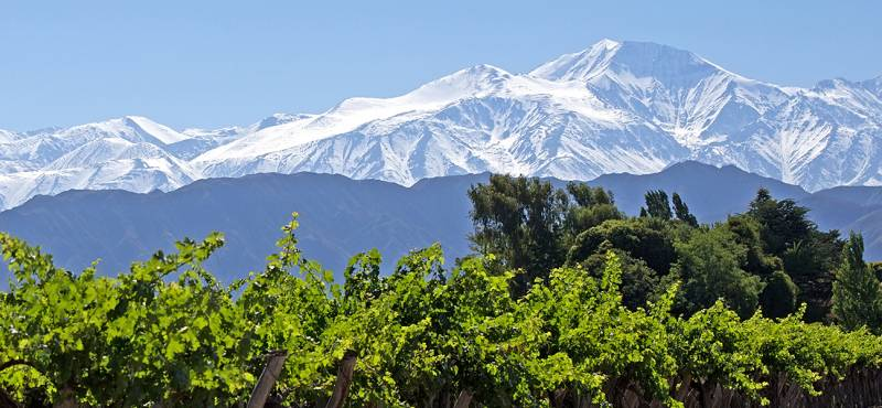 Mendoza Day Tours and Activities - Argentina - On The Go Tours