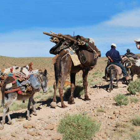 Migration-Of-The-Berbers-Itinerary-Main-Trekking-Adventures-Morocco