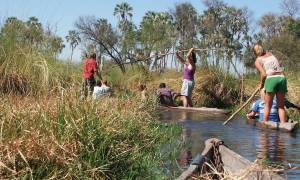 Mokoros in the Okavango Delta - Africa Overland Safaris - Africa Lodge Safaris - Africa Tours - On T
